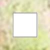 Fyrkantsmutter